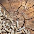 wood-pellet